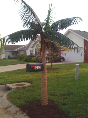 Palm Tree Mailbox Post